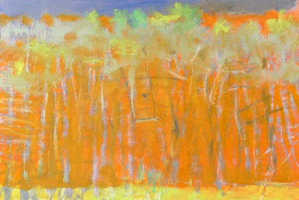 GRAt TREES AGAINST ORANGE, 2008