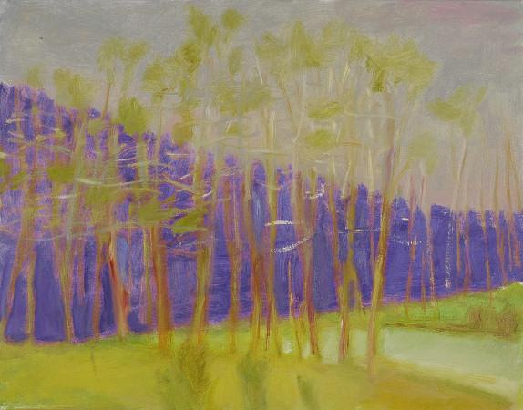 Purple Slice, 2007, Oil on Canvas, 22 X 32 kahn22438